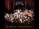 Chris Cornell - Black Hole Sun [SONGBOOK]