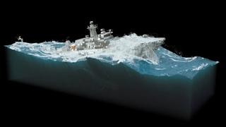 Highsea navy whales