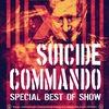 08.12 - Suicide Commando (BEL) - Opera (С-Пб)