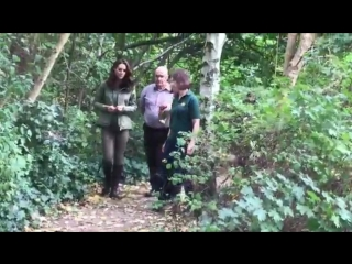 A forest walk for the Duchess - in the heart of Paddington.mp4