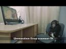 Малыши редчайших животных в зоопарке отеля Ялта Интурист