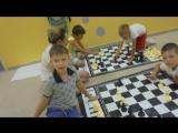 Шахматы в