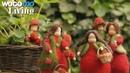Puppen aus Filz - eine ganze Familie Blumenkinder in liebevoller Handarbeit