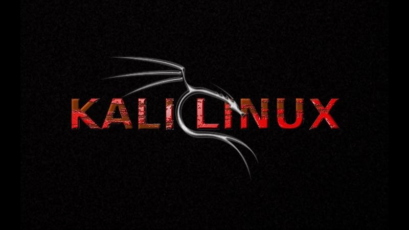 Ошибка при установке Kali Linux с флешки на жесткий диск, требует вставить диск