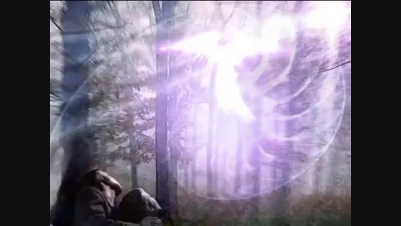 Путешествие в храм фиолетового пламени в Телосе смотреть онлайн без регистрации
