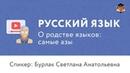 Русский язык | О родстве языков: самые азы - Светлана Бурлак (лингвистика)