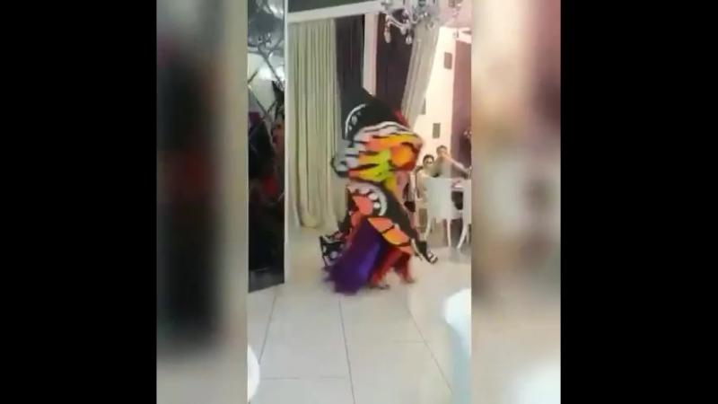Волшебный танец Регины! Огненные крылья.