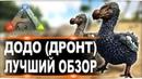 Додо Dodo в АРК. Лучший обзор приручение и способности в ark