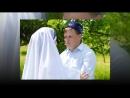 ProShow Slideshow свадьба mp4