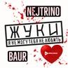 Жуки - Я не могу тебя не любить (Nejtrino Baur Remix)