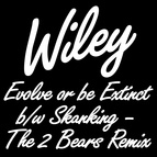 Wiley альбом Evolve or be Extinct b/w Skanking - The 2 Bears Remix