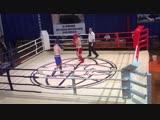 3 раунд Тюрин Антон 2000 г. р. - Юдин Евгений 71 кг Полуфинал ЦФО, Липецк 16.02-2019.