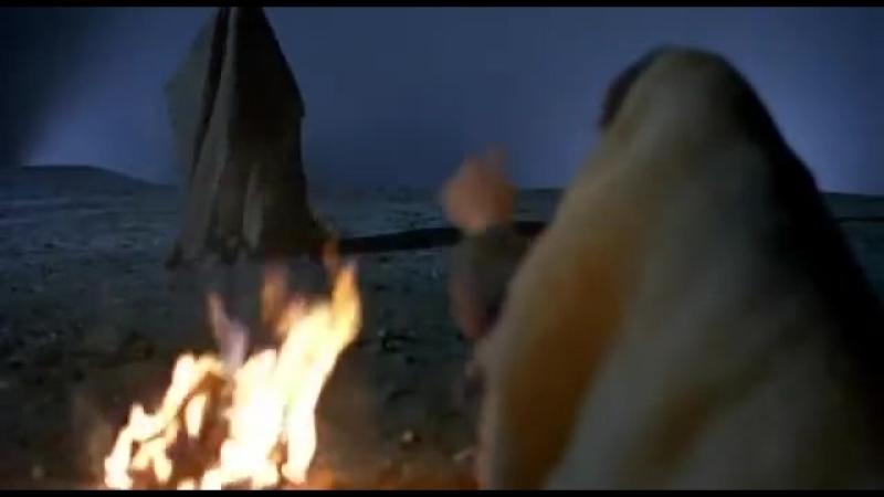 «Бродячие собаки» (2004) سگهای ولگرد