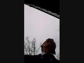 Заур Гасанов - Live