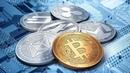 Какие купить альткоины Криптовалютный портфель Какую выбрать криптовалюту