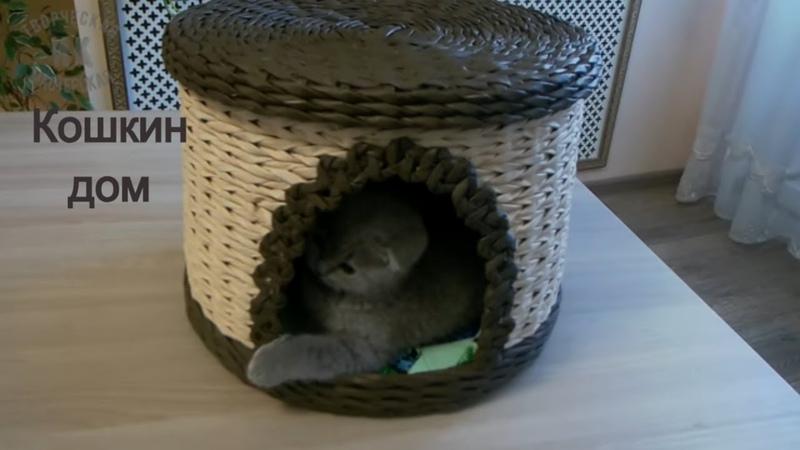 Домик для кошки из газетных трубочекCat lodge from newspaper tubes
