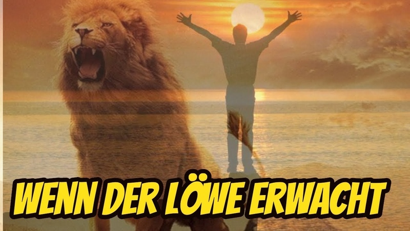 Wach auf und lerne - Wenn der Löwe erwacht!