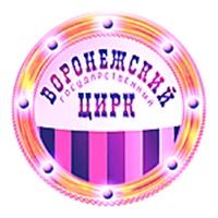Логотип Воронежский Государственный Цирк