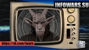 666 Начало Антиутопическое будущее и чипирование