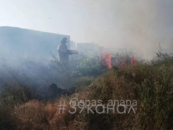 Под Анапой поджигатели устроили природный пожар