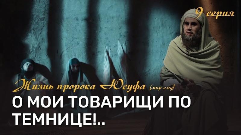 Пророк Юсуф (мир ему) в темнице и его отношение к заключенным   История Юсуфа (мир ему) [9-20]