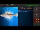 Легендарная рыбалка 2 игра на android