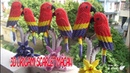 3D ORIGAMI SCARLET MACAW PARROT DIY PAPER SCARLET MACAW