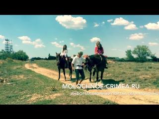 Евпатория.Село Витино.Прогулки на лошадях.Катание на лошадях.Фотосессия.Видеосъемка.