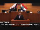 Гогокин Законопроект о социальных сетях Губернская Дума