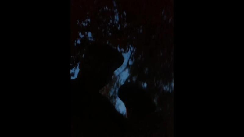 ПЕТЛЮРА | Юрий Барабаш - Live