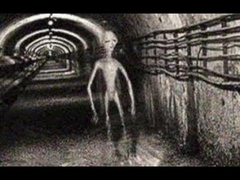 Вскрываются факты об НЛО о которых раньше боялись говорить Что скрывают Секретные подземные базы
