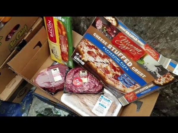 DUMPSTER DIVING ALDI DAILY VIDEO 54 DOUBLE FEATURE