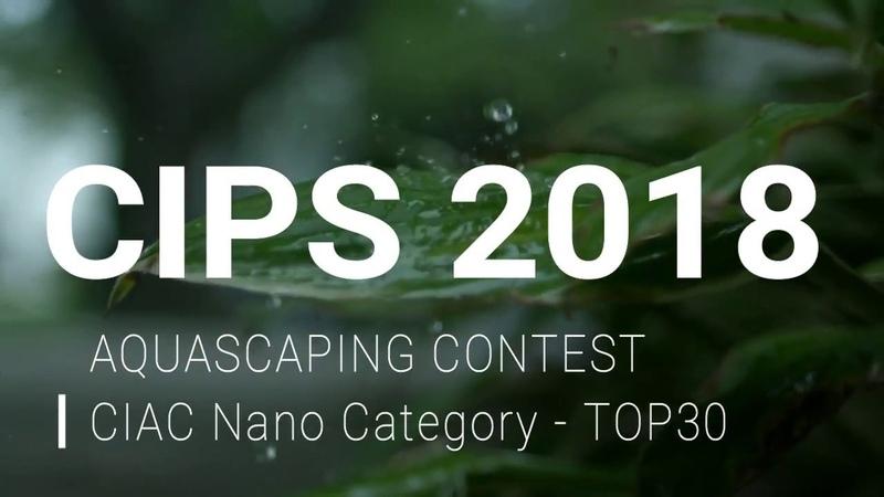 CIPS 2018 AQUASCAPING CONTEST CIAC Nano Category TOP30