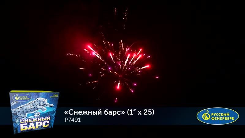 P7491 Снежный барс (1,0х 25) МОНОБЛОК Батарея салютов Русский Фейерверк