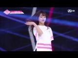PRODUCE 48 | AKB48 - Шинозаки Аяна - Nekkoya (pick me) fancam