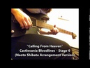 Calling From Heaven on Ibanez RG5EX1 Castlevania Bloodines Naoto Shibata Version