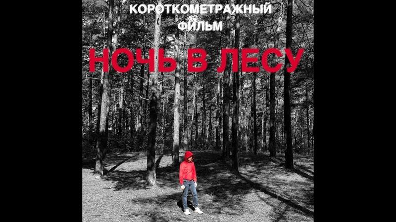 Короткометражный фильм «Ночь в лесу» Киношкола им. МакГаффина