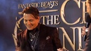 Fantastic Beasts The Crimes of Grindelwald London Premiere Johnny Depp