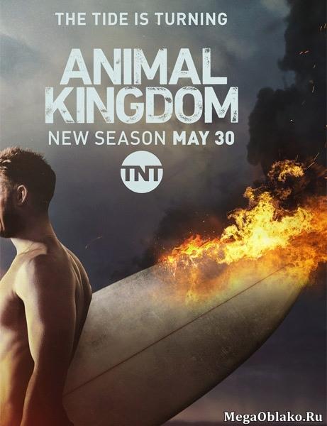 По волчьим законам / Animal Kingdom - Полный 2 сезон [2017, WEB-DLRip | WEB-DL 1080p] (LostFilm)