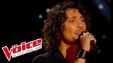 Kate Bush Wuthering Heights Fabien Incardona The Voice France 2014 Blind Audition