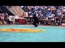 Wushu - Ray Park doing Chang Quan on the 93 Wushu Worlds