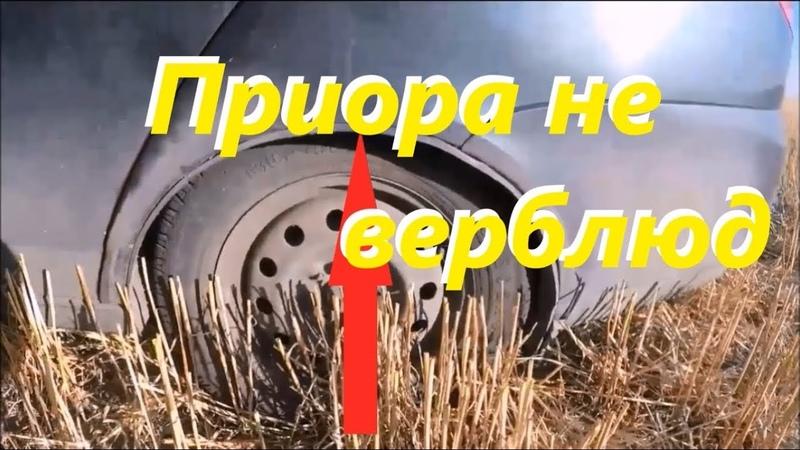 Из за Металлокопа Монеты прибавились! (Правдивая история!)
