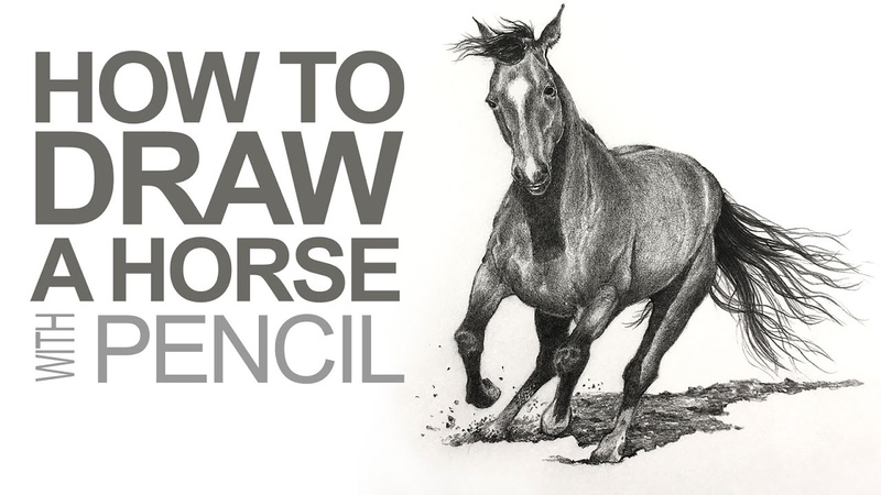 How to Draw a Horse - Graphite Pencils
