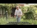 Коттеджный сад переведено ландшафтной студией ДриадаС