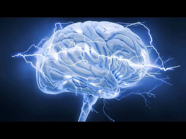 Тайны сна и тайны мозга (рассказывают Владимир Ковальзон и Александр Калинкин) nfqys cyf b nfqys vjpuf (hfccrfpsdf.n dkflbvbh rj
