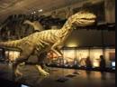 Динозавр ревет в Музее естествознания Вены Австрия