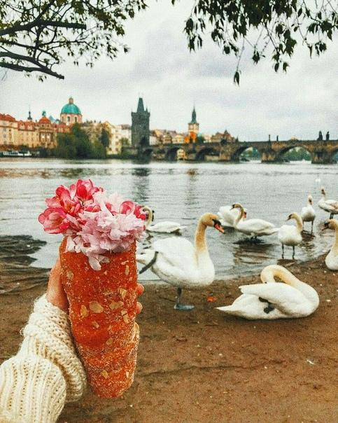 Петербург: ПРЯМЫЕ рейсы в Прагу от 5400 рублей туда-обратно из Хельсинки