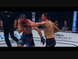 MMA UFC HIGHLIGHT