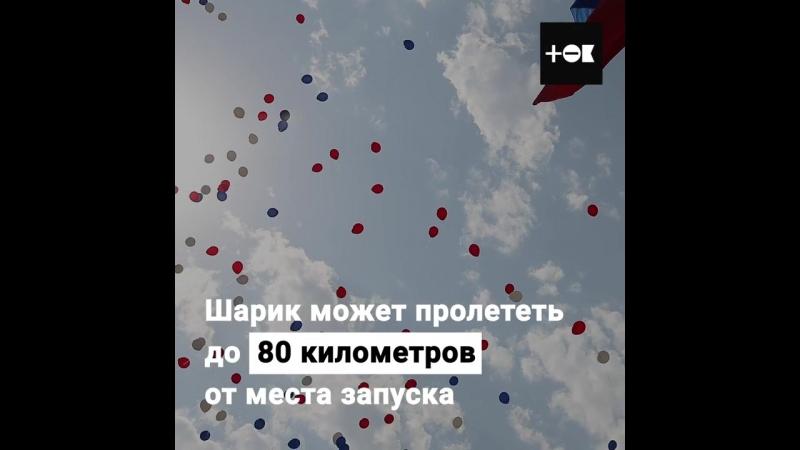Воздушные шары могут убить животных: почему запускать их опасно?В преддверии праздника - Дня Рождения Нашего Замечательного Гор