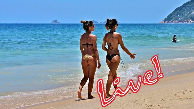 Alanya Turkey, Alanya Türkei, Аланья Турция Palmiye Beach Hotel Live Camera. PalmiyeBeachhotel.com